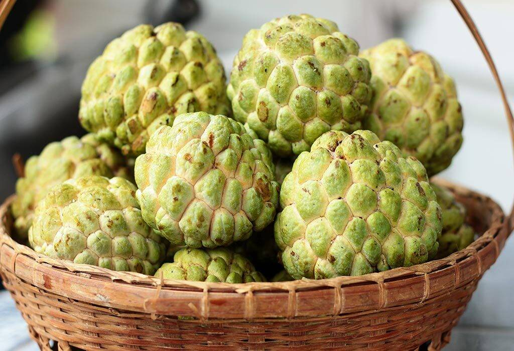 Want to stay healthy: Include 'Custard Apple' to your diet