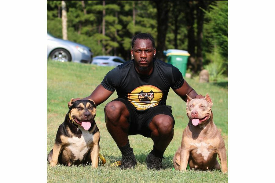BurrnationK9s are the One-Stop Shop for the best high-quality Pitbulls.