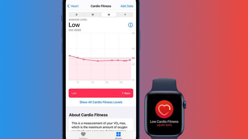In watchOS 7.2 and iOS 14.3- how to set cardio fitness levels