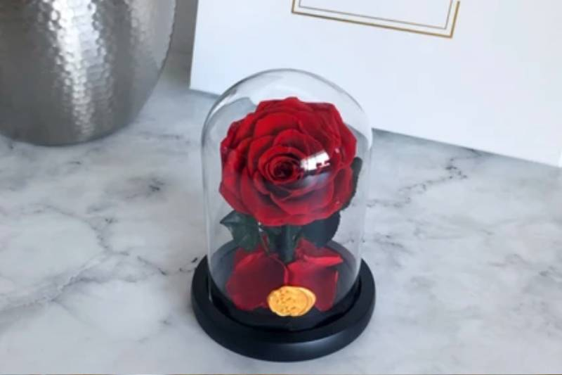 Why Is Gifting An Enchanted Rose An Excellent Idea?