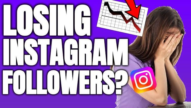 Certain Content Creators Are Worried About Sudden Drop On Their Instagram Followers.