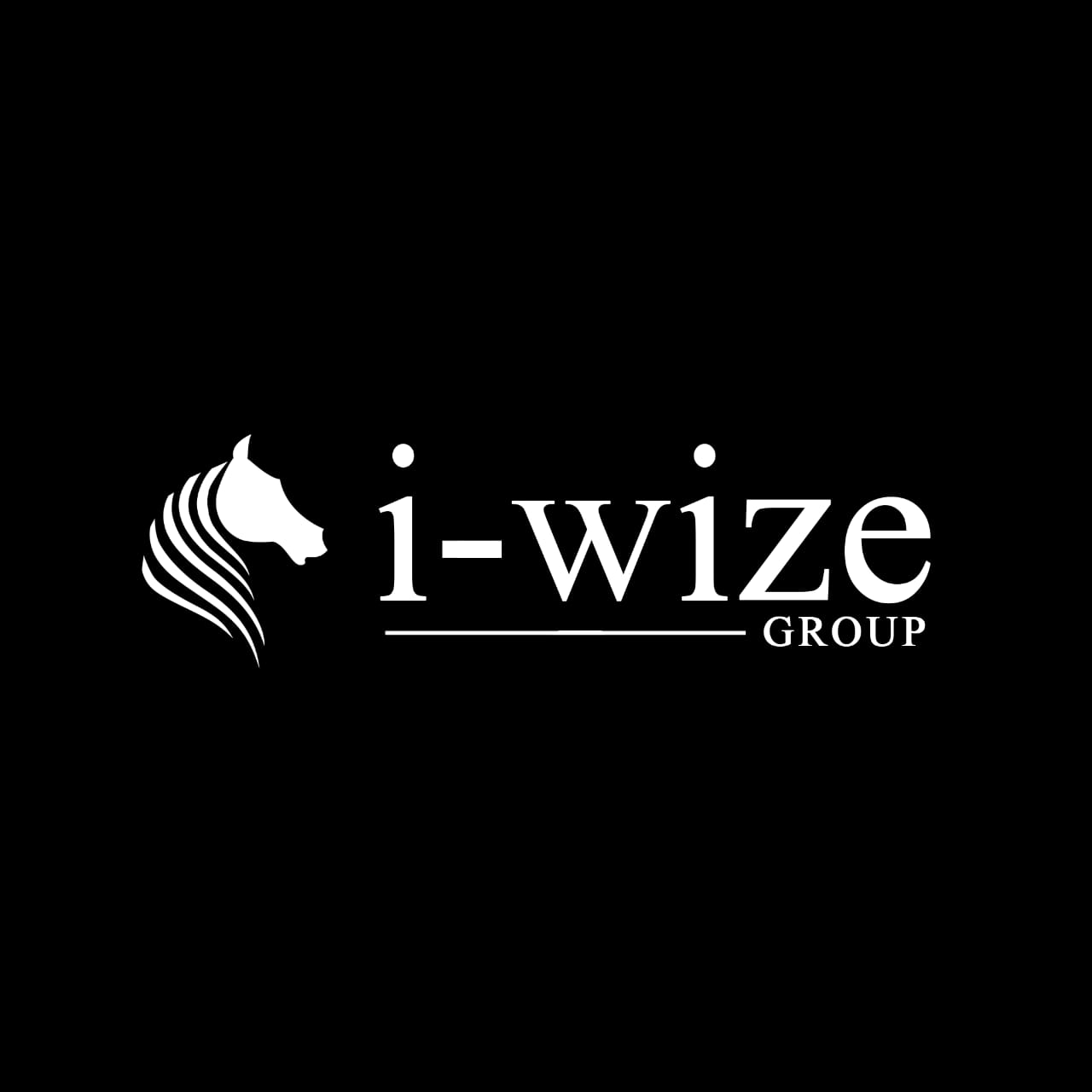 I-WIZE Group: Helping You Build Multiple Income Sources